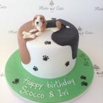 beagle #mmcanimals #mmcfunny #lovemydog